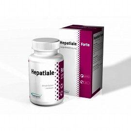 VetExpert Hepatiale Forte 30 Tabletten - Umverpackung defekt
