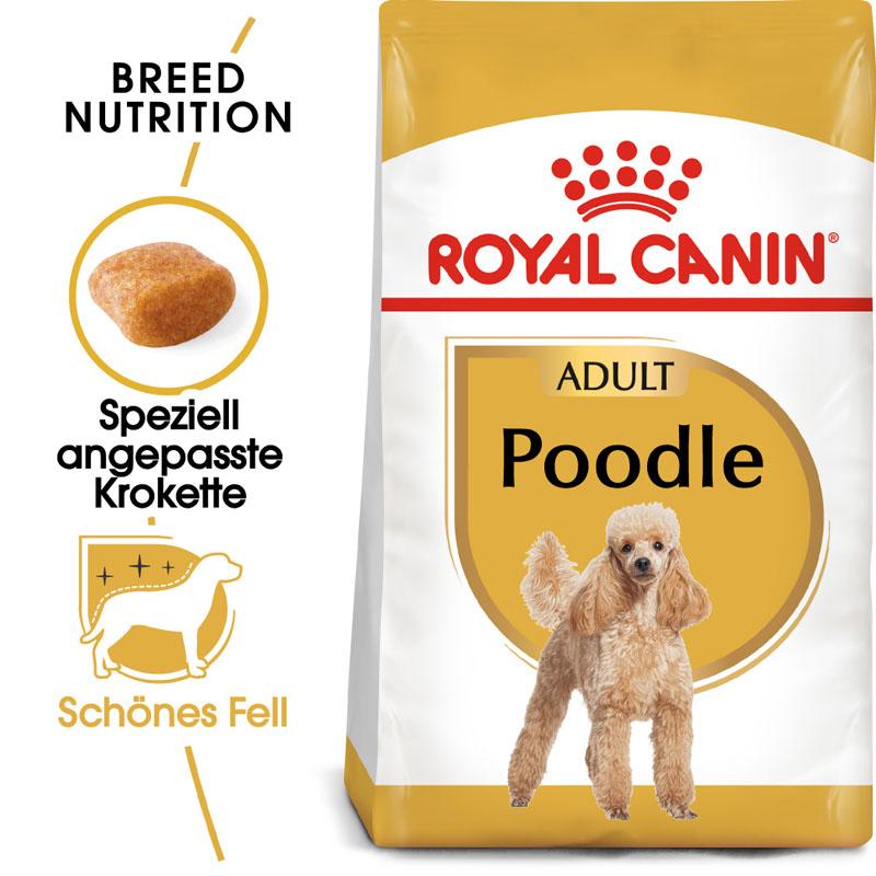 Royal Canin Poodle Adult Trockenfutter