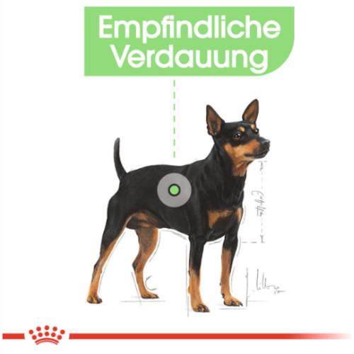 Royal Canin DIGESTIVE CARE Nassfutter für Hunde mit empfindlicher Verdauung