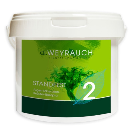 Nr. 2 Standfest von Dr. Weyrauch 5 Kg