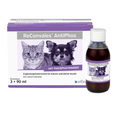 ReConvales AntiPhos für Hunde und Katzen von afavet