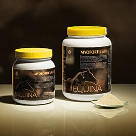 Equina Myofortil zur Optimierung des Muskelstoffwechsels von WDT