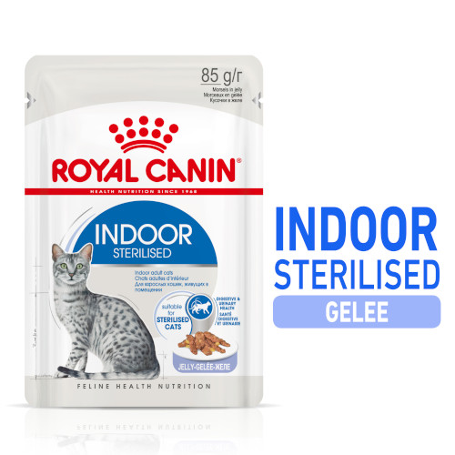 Royal Canin INDOOR Sterilised in Gelee Nassfutter für Wohnungskatzen