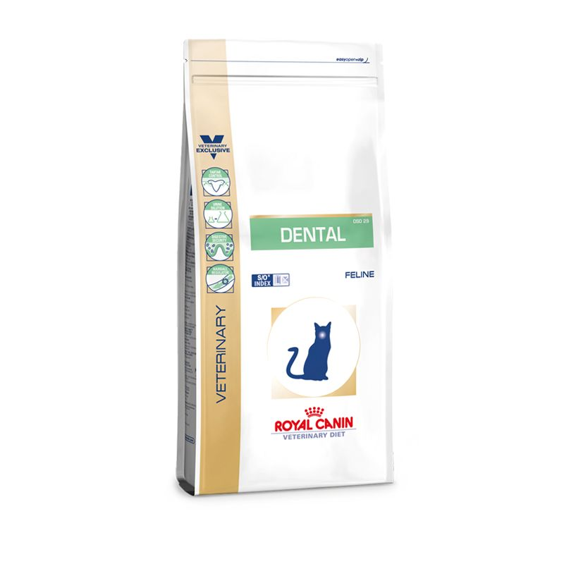 Royal Canin Dental Feline Trockenfutter