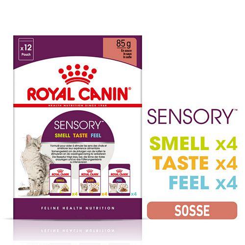 Royal Canin SENSORY Smell Taste Feel Nassfutter Multipack in Soße für wählerische Katzen 12 x 85 g