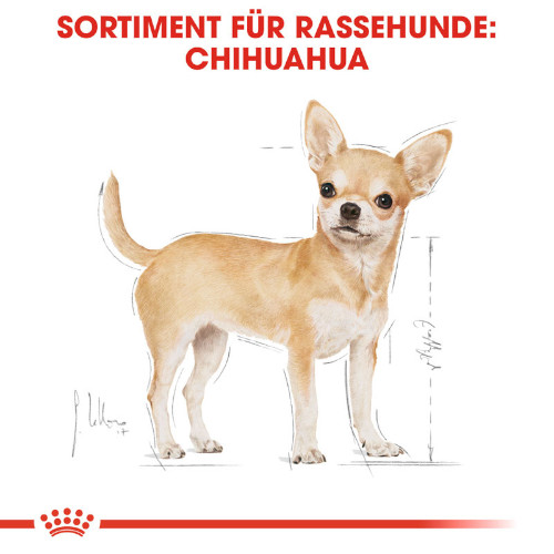 Royal Canin Chihuahua Adult Hundefutter nass in Soße