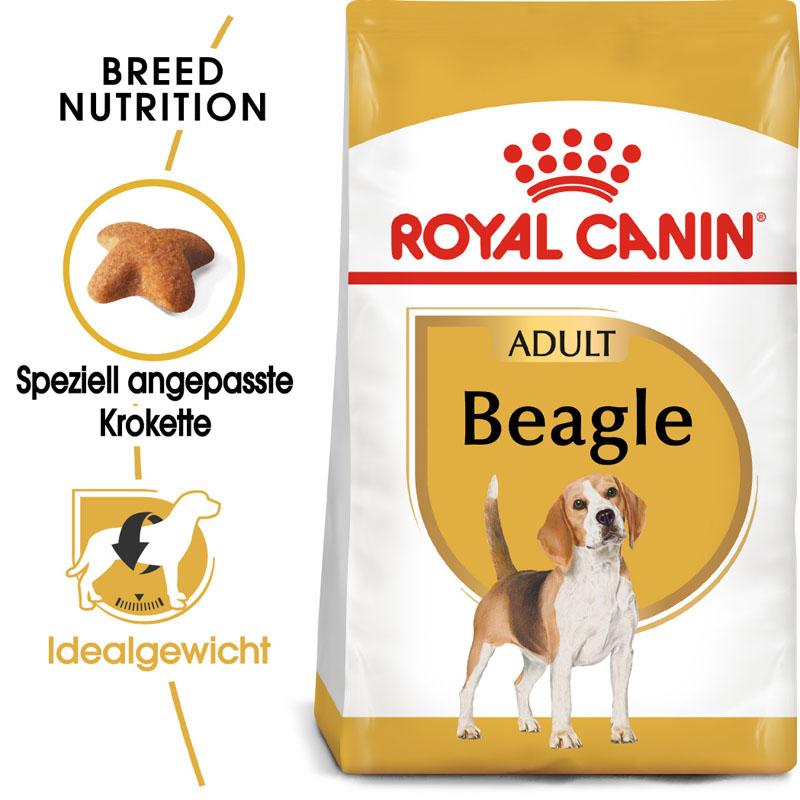 Royal Canin Beagle Adult Hundefutter trocken