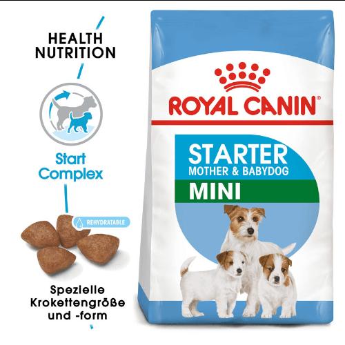 Royal Canin Mini Starter Trockenfutter für tragende Hündinnen und Welpen kleiner Rassen