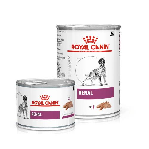 Royal Canin Renal Canine 12 x 200 g Nassfutter