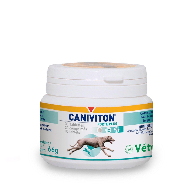 Caniviton Forte Plus Kautabletten für die Gelenke beim Hund von Vetoquinol