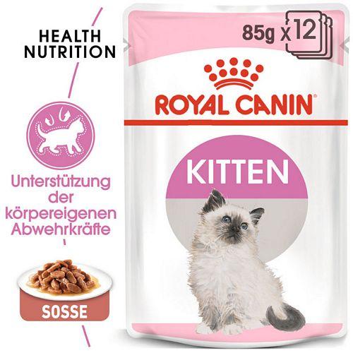 Royal Canin KITTEN Nassfutter in Soße für Kätzchen