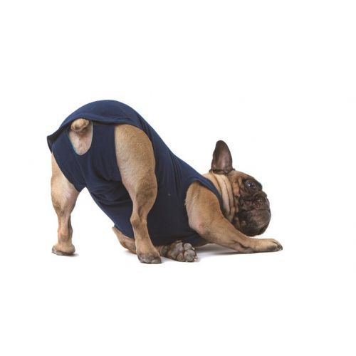 Medical Pet Shirt Body für Hunde