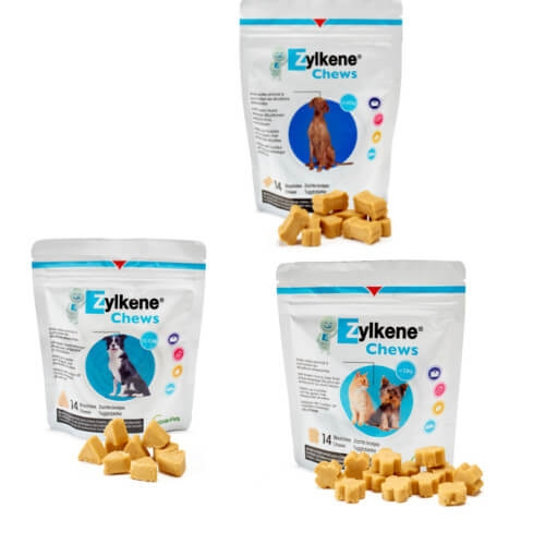 Zylkene Chews 75mg - 14 Chews für Hunde und Katzen unter 10kg