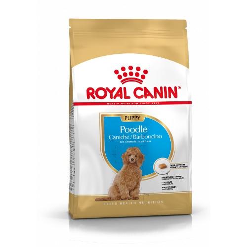 Royal Canin Poodle Puppy Trockenfutter