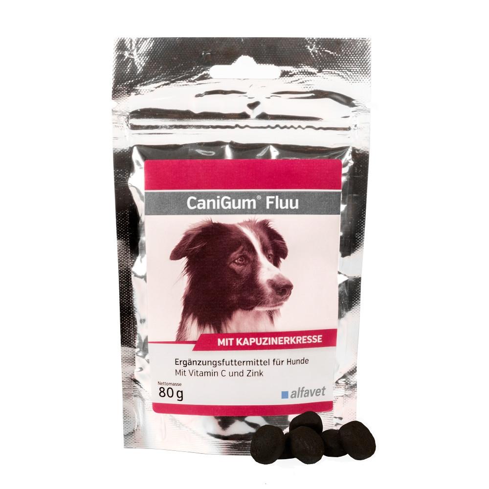 CaniGum Fluu zur Immunstärkung bei Hunden von alfavet