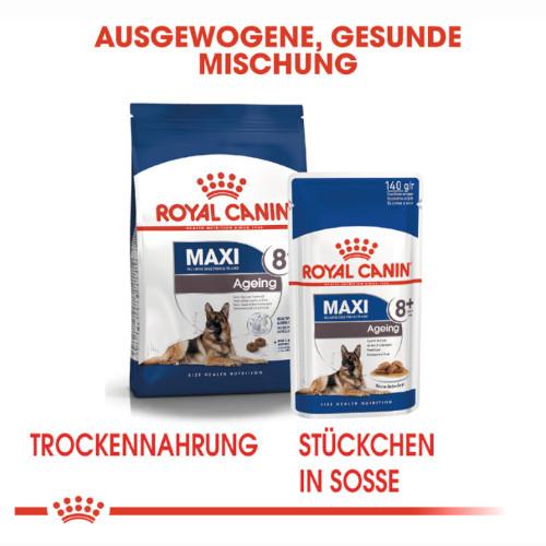 Royal Canin MAXI Ageing 8+ Nassfutter für ältere große Hunde