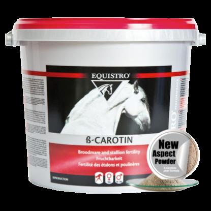 Vetoquinol EQUISTRO ß-Carotin 3000 g