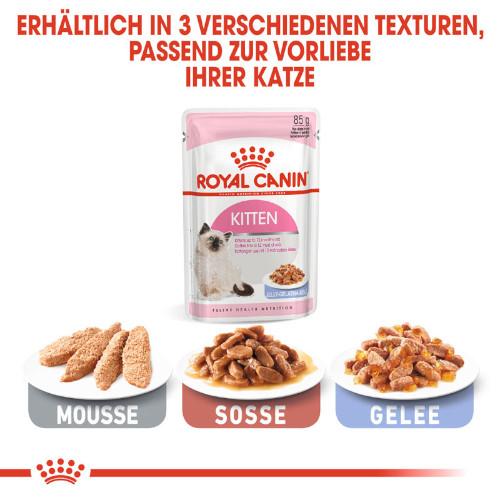Royal Canin KITTEN Nassfutter in Mousse für Kätzchen