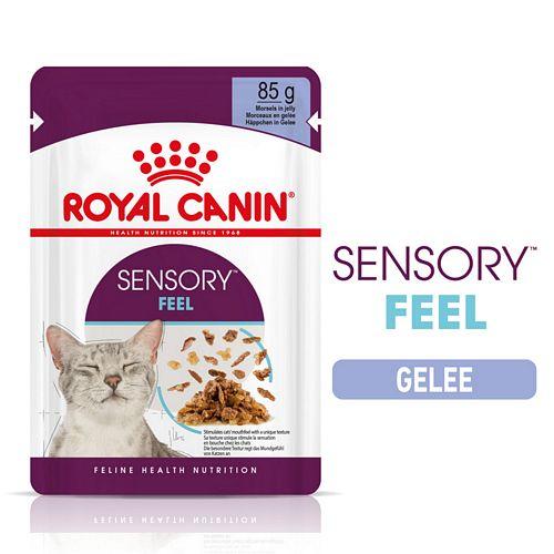 Royal Canin SENSORY Feel Nassfutter in Gelee für wählerische Katzen 12 x 85 g