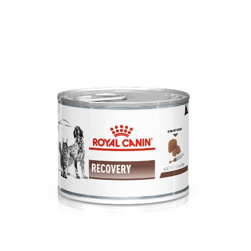 Royal Canin Recovery Canine & Feline Nassfutter