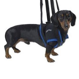 Gehhilfe für Hunde vorne