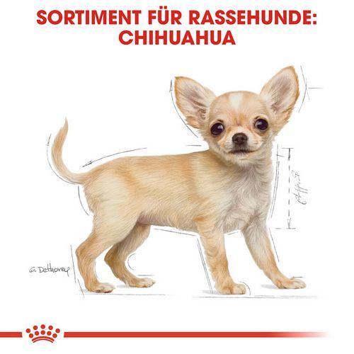 Royal Canin Chihuahua Puppy Welpenfutter trocken