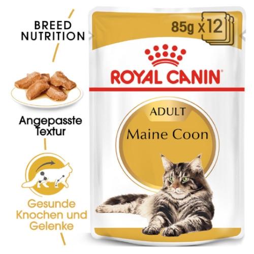 Royal Canin Maine Coon Adult Katzenfutter nass