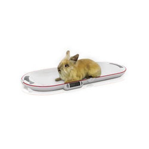 Soehnle Klappbare Kleintierwaage – bis 15 kg