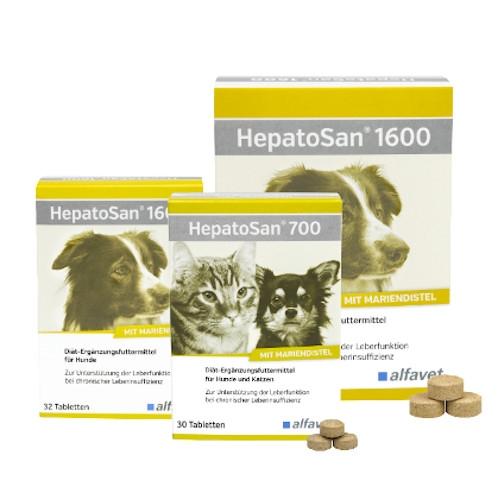 HepatoSan 700 für Hunde und Katzen zur Unterstützung der Leberfunktion von alfavet
