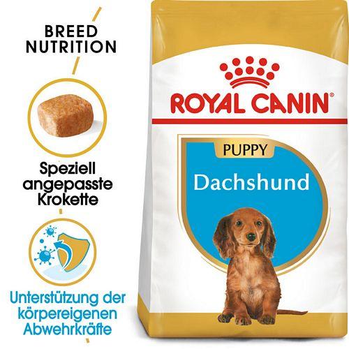 Royal Canin Dachshund Puppy Welpenfutter trocken für Dackel
