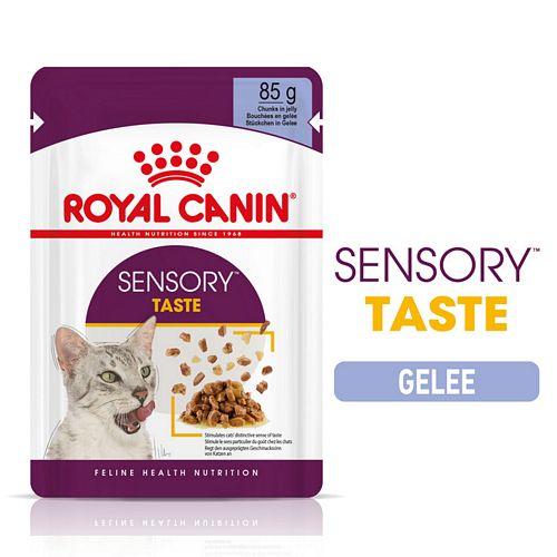 Royal Canin SENSORY Taste Nassfutter in Gelee für wählerische Katzen 12 x 85 g