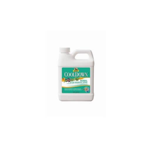 CoolDown Washlotion von Absorbine 946 ml