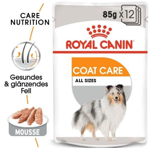 Roya Canin COAT CARE Nassfutter für glänzendes Fell